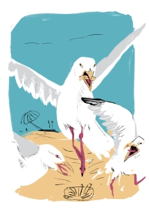 gullfood